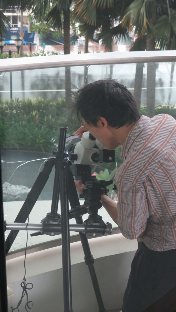 In-situ microscopic analysis